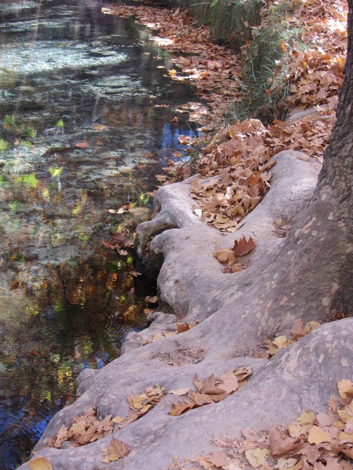 """""""Junto al río"""". Foto: Bárbara"""