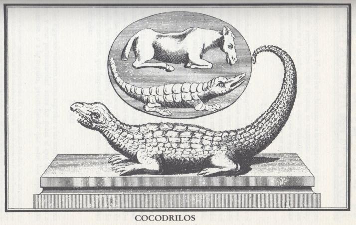 Ilustración del primer tomo.
