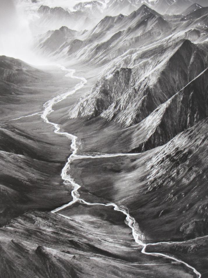 Sebastiao Salgado: Las tierras del Norte.Alaska. Estados Unidos. 2009.