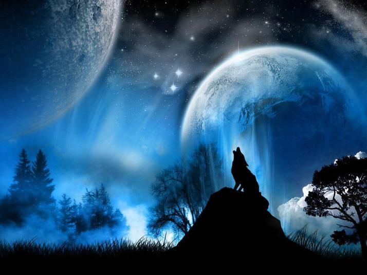 Lobo Lunar