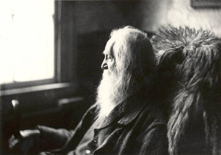 A. L. Coburn: Walt Whitman, 1891